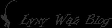 Łysy Wąż Blog